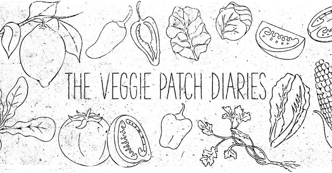 Bloggin over on the diaries has taken a back seat over the past twelve months. I'm In the process of giving it a slight facelift along with a new post dropping this weekend filled with organic goodness, stay tuned